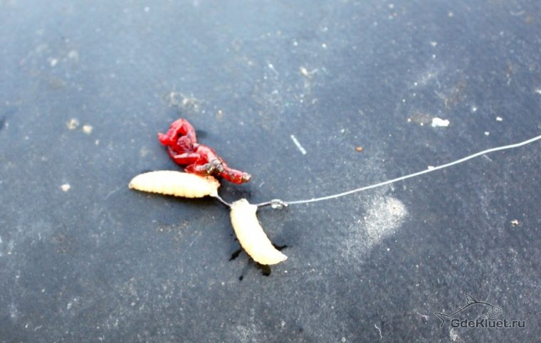 что заменяет опарыши на рыбалке
