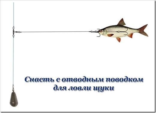 снасть для ловли на мелководье