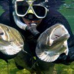 Что нужно для подводной охоты