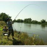 Отдых и рыбалка в Астрахани: поездка за достойным трофеем