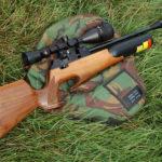Какую пневматическую винтовку выбрать