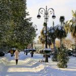 Какая погода в Адлере в январе