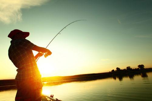 Когда лучше ехать на рыбалку в Астрахань