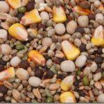 Зерновые приманки