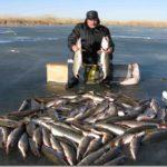 Небольшие хитрости во время большого улова рыбы